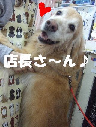 2009_02020020.jpg