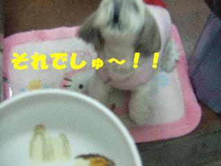 2009_02060107.jpg