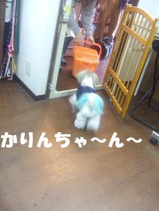 2009_02230282.jpg