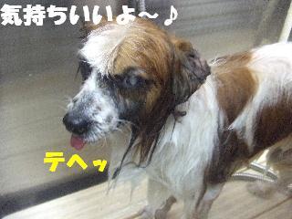 2009_02270004.jpg