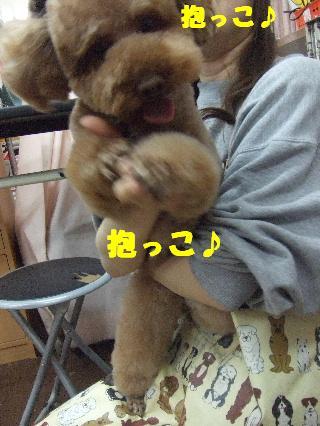 2009_02270036.jpg
