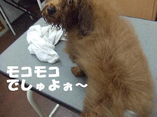2009_03020024.jpg