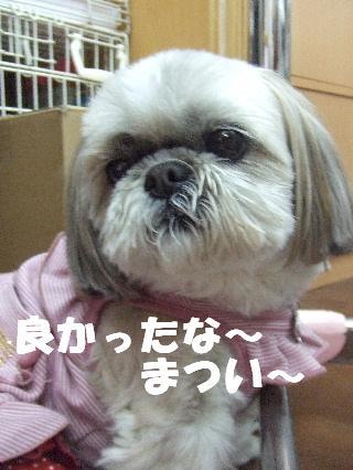 2009_03160005.jpg