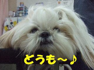 2009_03210035.jpg