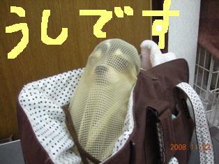 DSCN4929.jpg