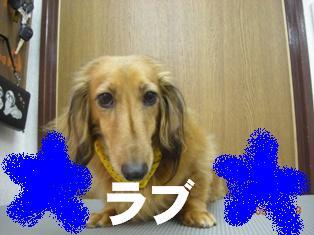 DSCN5668.jpg