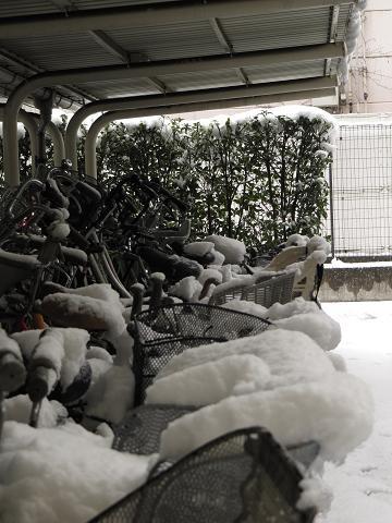 IMG_雪3