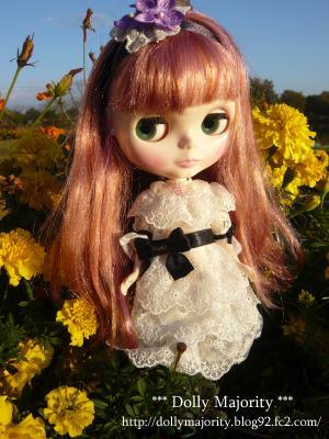 お花とヴェロニカレース