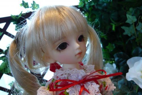 P1020635_convert_20090426195415.jpg