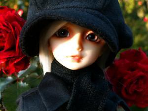 PICT0022_20081223025950.jpg