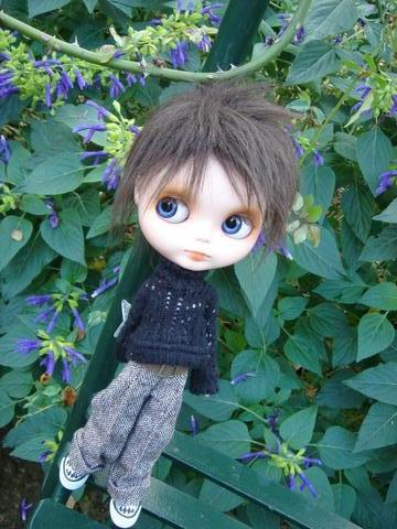 紫の花がきれい♪