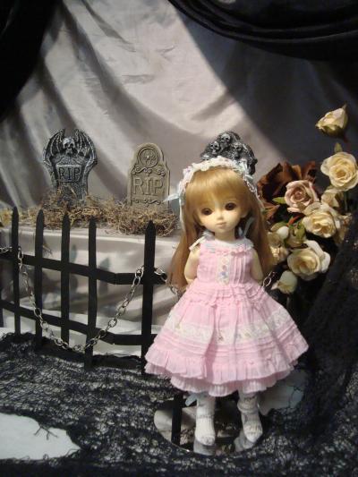 Picture+1392_convert_20111122065916.jpg