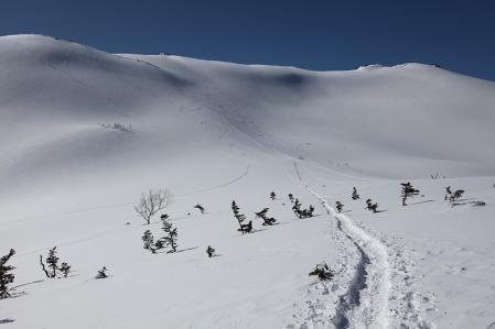 雪崩が怖いけど直登ですか。。。