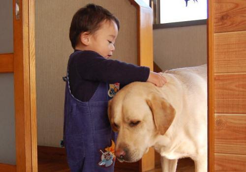 20090116jitaku5.jpg
