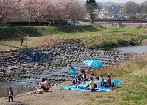20090412akirunokawa1.jpg