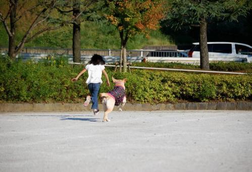 20091010sayamadani2.jpg