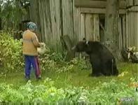 熊に襲われるロシアのおばちゃん