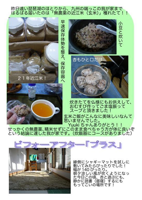 2009-09-20-1_convert_20090921053534.jpg