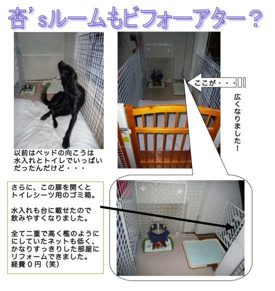 2009-10-10_convert_20091023145604.jpg