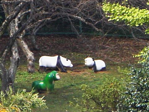 野生のパンダと緑のゴリラ