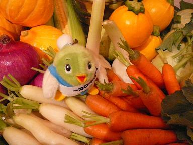 地元の野菜、おいしいだろうなぁ~