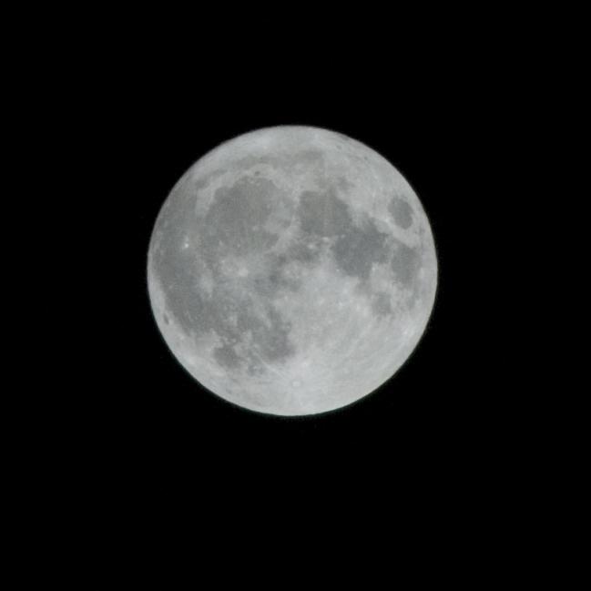 2011-03-20_00-32-20.jpg