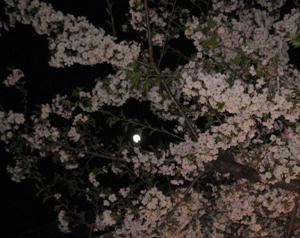 2009.4.7順ちゃんちblog01