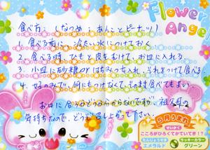 ちまきblog01