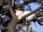 blog_cat2.jpg