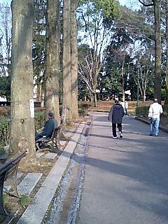 中央公園1