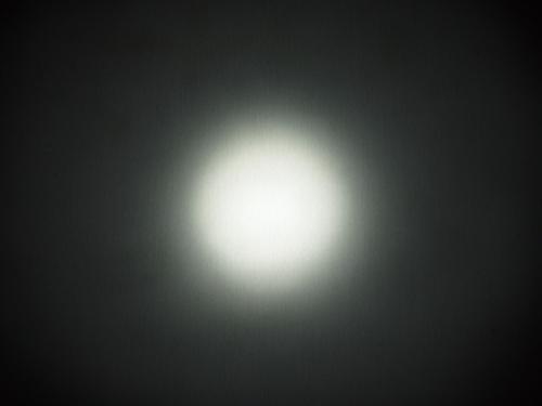 P6100457.jpg