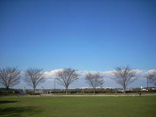 20081206公園