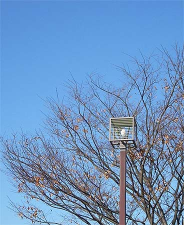 20081206街灯②