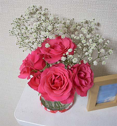 20081108花開く