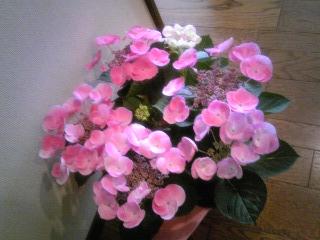 「バースデーのお花」