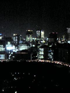 BLUE SKYからの夜景(東京都)