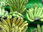 「バナナ」(ウブド・バリ島)