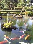 「日本庭園」ニューオータニ東京