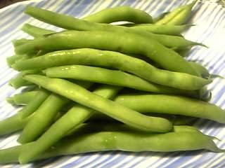 「インゲン豆」小さな田舎市場(阿蘇郡小国町)