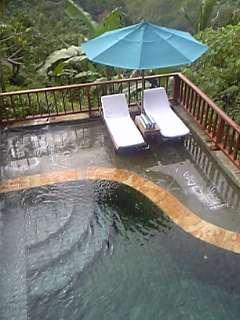 「リビングからのプールの眺め」カマンダル・リゾート&スパ(バリ島・ウブド)