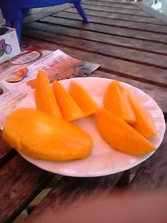 鹿児島県の長崎鼻フルーツフラワー王国のマンゴー