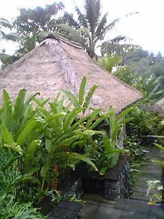 「ヴィラ」マヤウブド リゾート&スパ(バリ島)