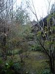 「木立の中に離れの部屋」山荘 わらび野(由布院)