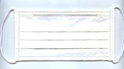B2009-3-1-1.jpg