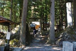 神社までの杉並木64