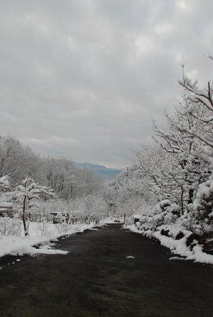 秩父の山21