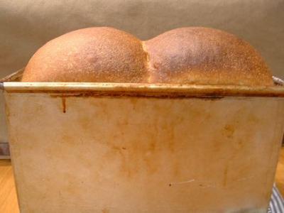 ソフト山食パン