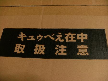 DSCF9841.jpg