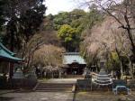 伊豆山神社境内1