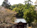 伊豆山神社境内2